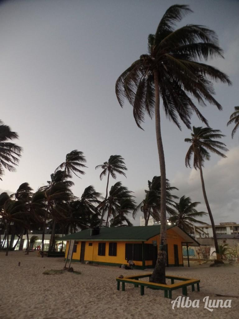 Caribe sin todo incluido