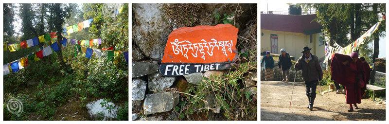 Ritual budista en la India