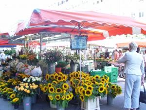 Flores alemanas // German flowers